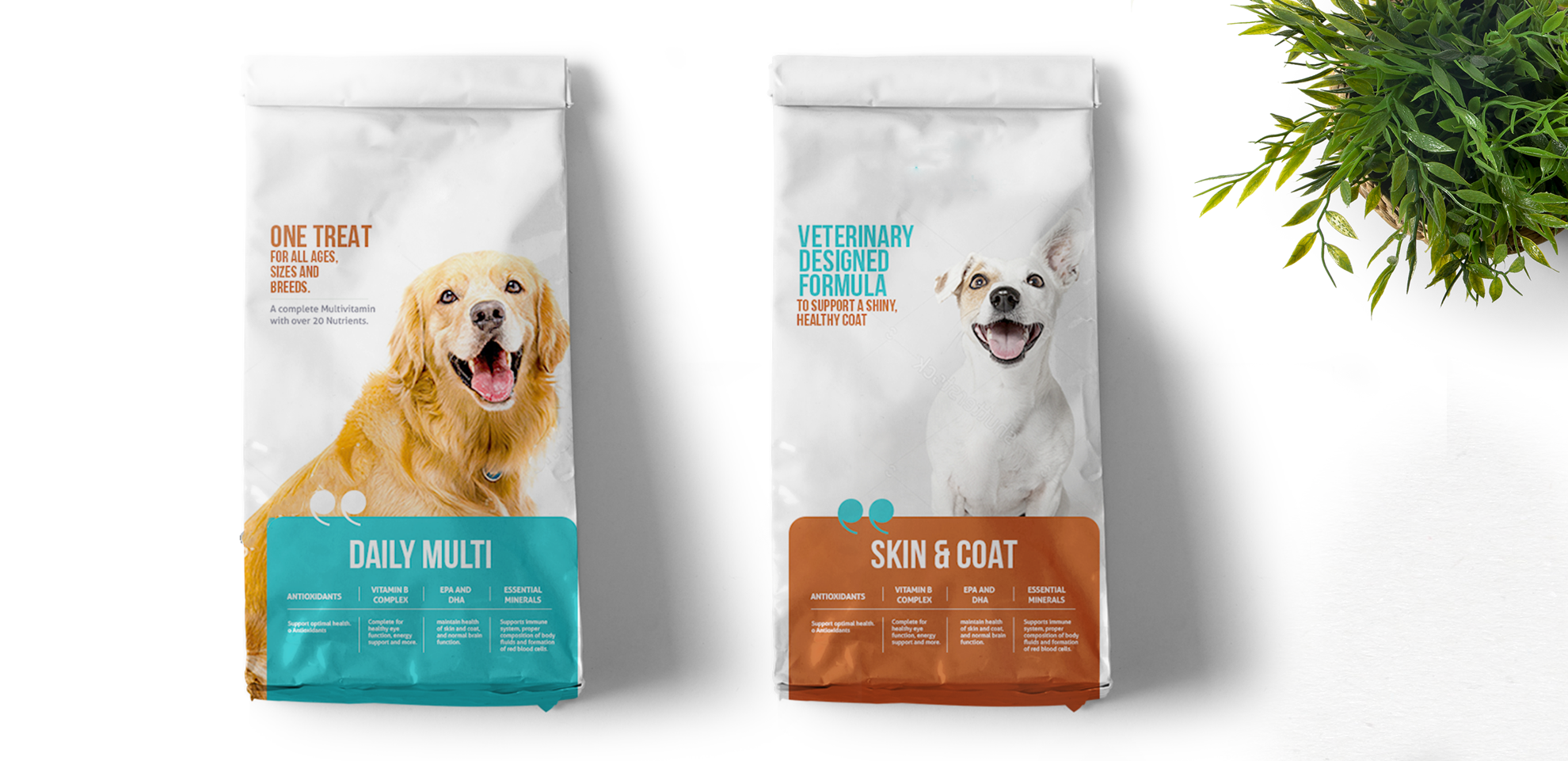 Verve_Concepts_Pet_Food_Branding_Final(www.verveconcepts.com)